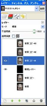 2009615110