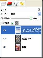 20091020412