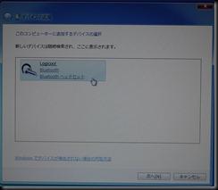 P1020548