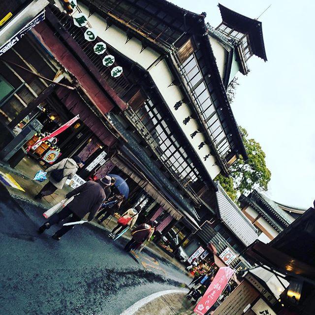成田山#followme #likeforlike #FF #instafollow #l4lp